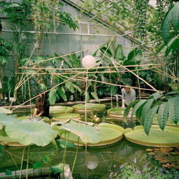 Botanischer Garten des KIT, Karlsruhe, 2014 Foto: Chen Haishu