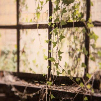24 - HAPPY DYSTOPIA #2 Ioanna Sakellaraki – Beautiful Terrible Ruins